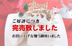 バニラの薫る苺ムース!クリスマスケーキ