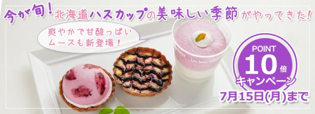 糖質制限ハスカップスイーツ新発売・キャンペーン