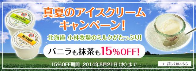 真夏のアイスクリームキャンペーン!【8/21まで15%OFF】